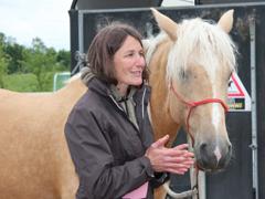 Vorbereitungen f r den ranch day und das curly horse eu for Exterieur beurteilung pferd